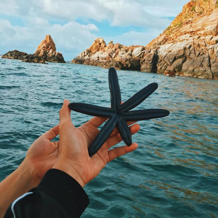 Điểm danh 8 bãi biển đẹp tựa thiên đường tại quy nhơn - 18